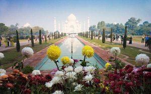 Luna de Miel La India